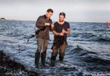 Lær om spise-tang fra de danske kyster